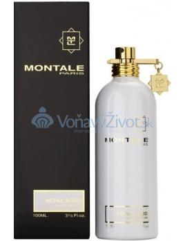 Montale Paris Nepal Aoud Parfémovaná voda 100ml U